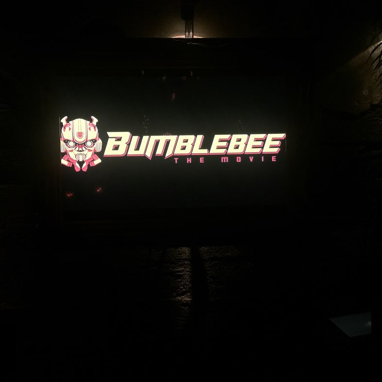 bumblebee-new-picture.jpg